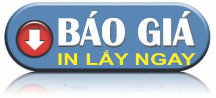 bao gia in vo hop lay ngay